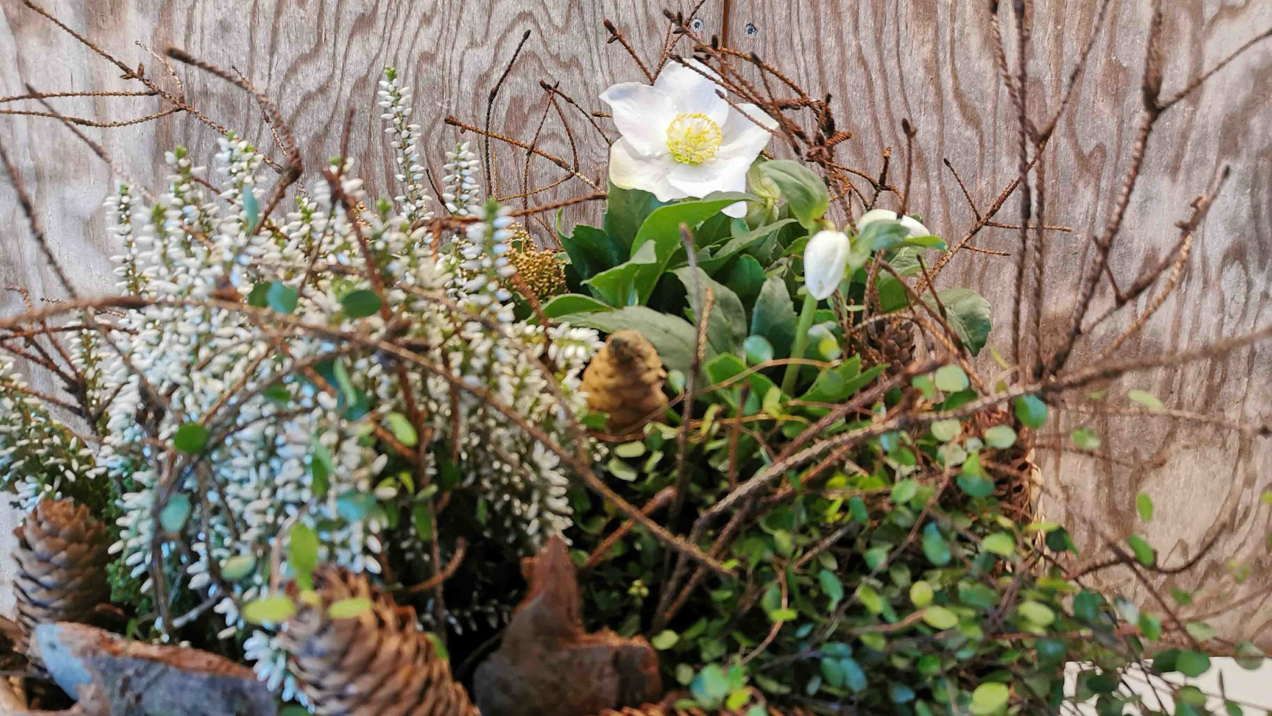 Bepflanzung, Gesteck, Urnenschmuck, Grabschmuck